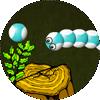 Le Serpent Bobo