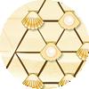 Puzle de conchas marinas